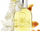 Indian jasmine, vetiver oil and notes of burning incense and chai combine to make NOBLE a warm, ethereal scent.