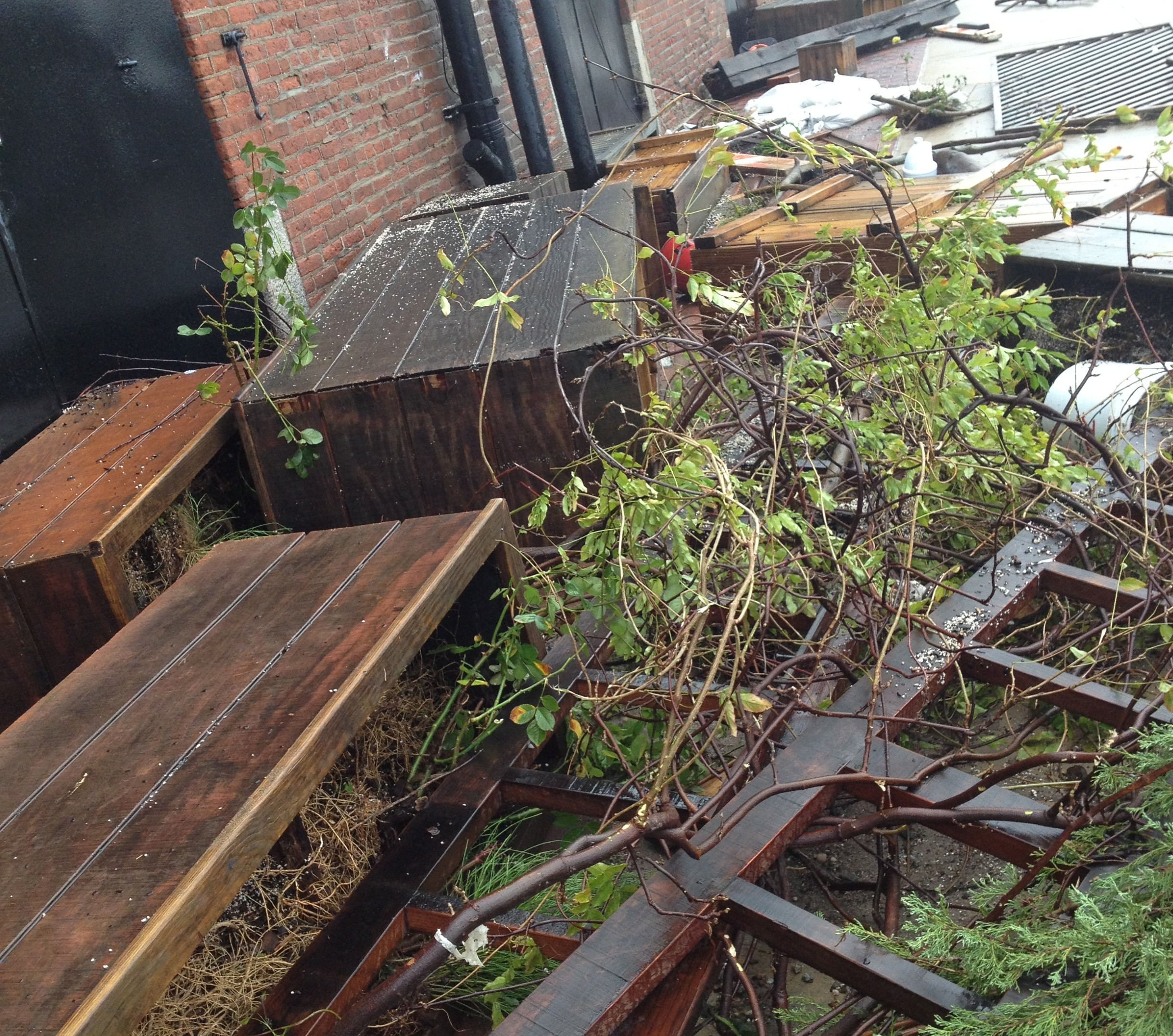 The storm left detritus all over Pier 41. Photo: Red Hook Winery
