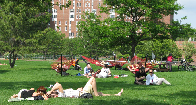 Bike, hike or just sunbathe; there's plenty to do for an afternoon at Governors Island. Photo: The Trust for Governors Island
