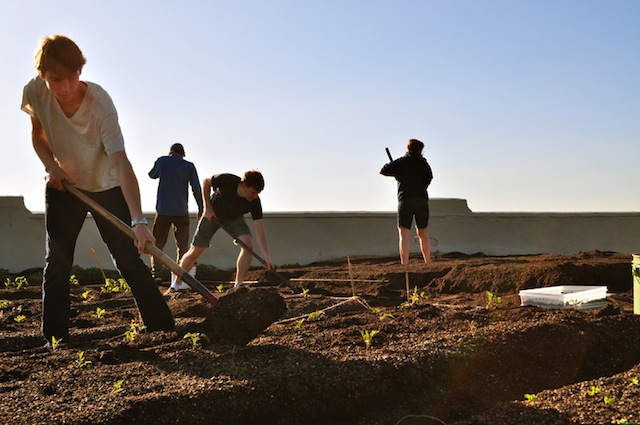 """Brooklyn Farmer,"" a documentary about the building of the world's largest rooftop farm in the Brooklyn Navy Yard, premieres this Saturday at DOC NYC film festival. Photo: Brooklyn Grange"