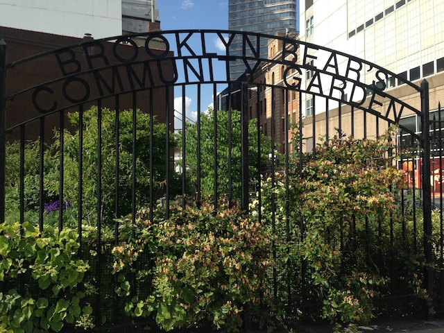 brooklyn-bears-community-garden-flatbush