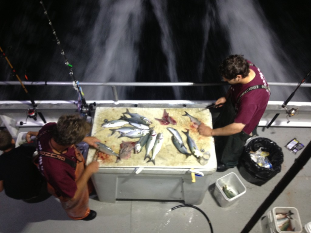 The crew of the Brooklyn VI cleans the catch on the way back to shore. Photo: Annaliese Griffin