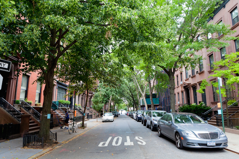 tree-lined-hicks-street-montague-street-brooklyn-heights