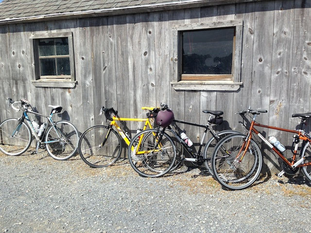 Bikes wait while their riders sample wines at Shinn Estate. Photo: Annaliese Griffin