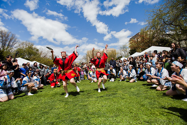 The Sakura Matsuri festival, a rite of spring in Brooklyn, returns on Saturday and Sunday. Photo: Liz Ligon via Brooklyn Botanic Garden