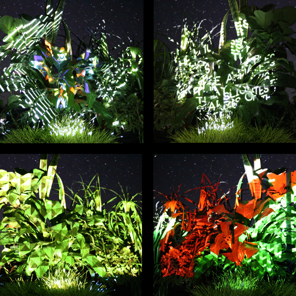 What the projections on Swale's plants might look like. Image: Biome Arts