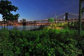 A few of the bridge from Brooklyn Bridge Park.