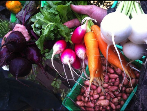 Farmigo Brings the Farmer's Market to Your Fingertips