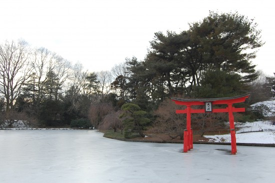 The Iconic Japanese Hill And Pond Garden Is Quite Possibly The Botanic  Gardenu0027s Main
