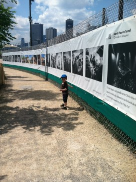 THE FENCE at Photoville is enjoyed best in the shade.