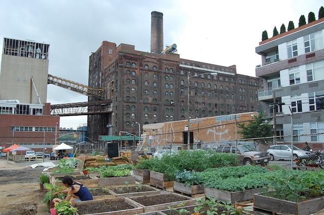 North Brooklyn Farms