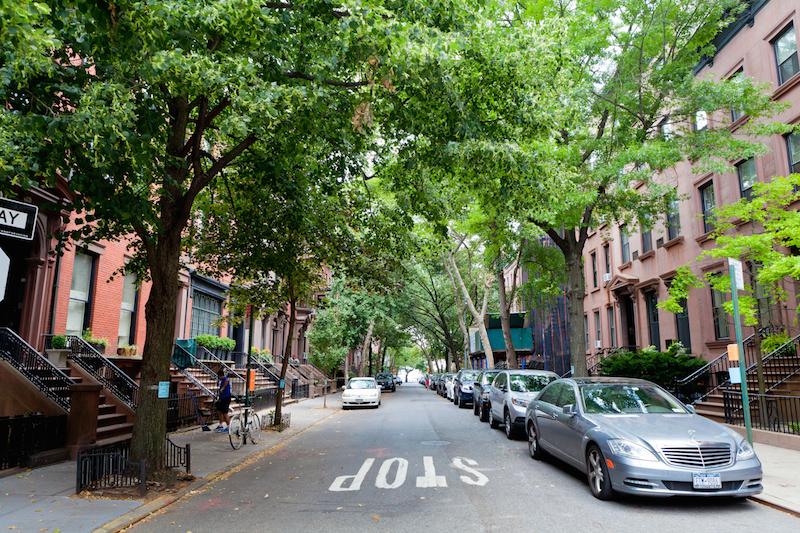 tree-lined-hicks-street-montague-street-brooklyn-heights