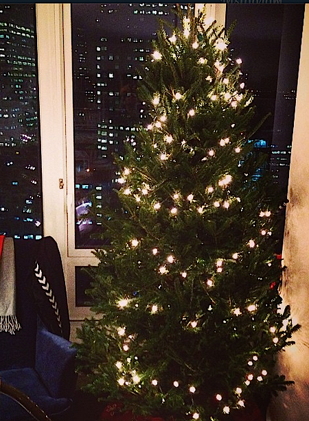 An Alpinely tree, all set up over Downtown Brooklyn. Photo: Alpinely