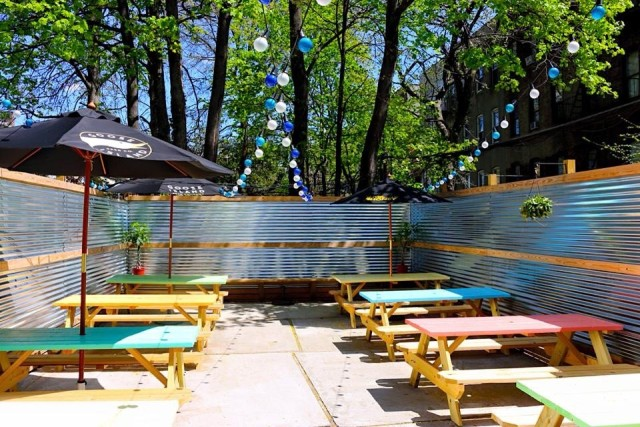 Branch Ofc's colorful backyard, where they'll be serving Sloe Cones all summer. Photo: Branch Ofc