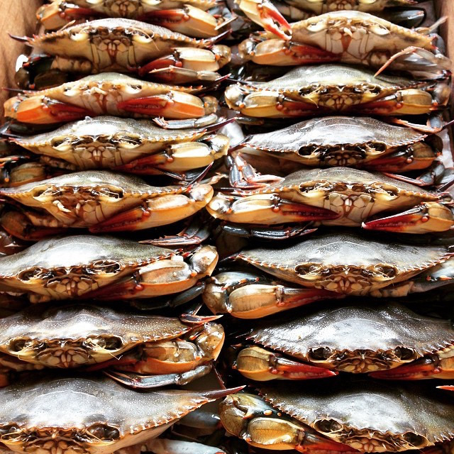 Get all the blue crabs you can eat at Thursday's crab boil at Ripper's at Rockaway Beach. Photo: Greenpoint Fish & Lobster Co.