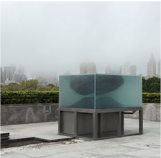Pierre Huyghe's installation at the Roof Garden at the Met. Photo: Metropolitan Museum of Art