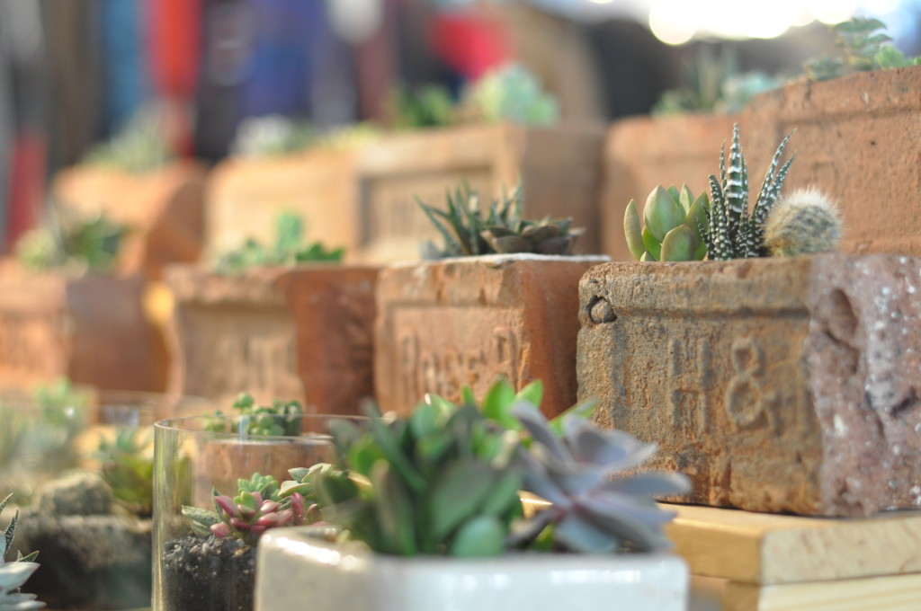 Something that can't be unseen: a charming assortment of succulents careening out of bricks, designed by Little Gardens. You'll want it, and your aunt will probably want it, and so will anyone wanting to spruce up a porch or balcony space. Get five of them.