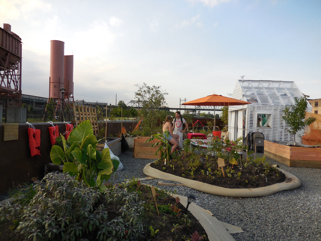 Aboard the floating food forest, Swale. It docked at Governors Island this week. Photo: Swale