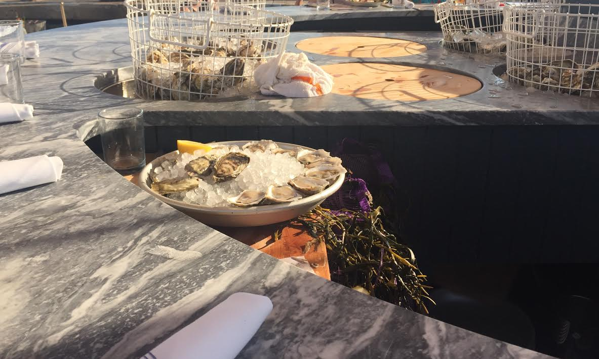 pilot bar oysters